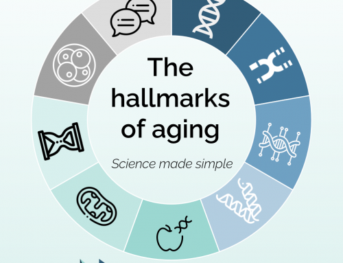 The hallmarks of aging, part one