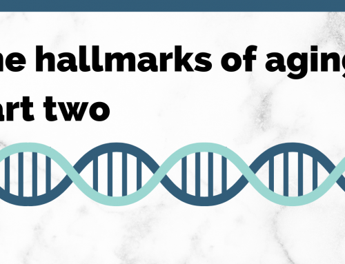 The hallmarks of aging, part two